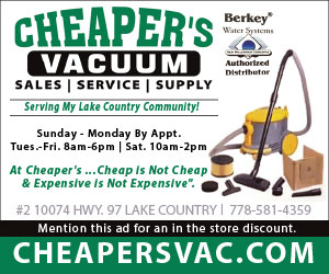 Cheaper's Vacuum (300×250)